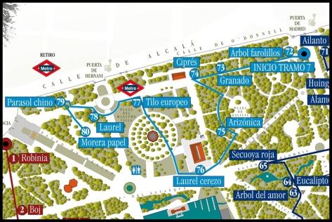Senderismo verde urbano 5 senda bot nica del retiro for Jardin botanico ucm